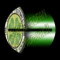 Celtic 01-P